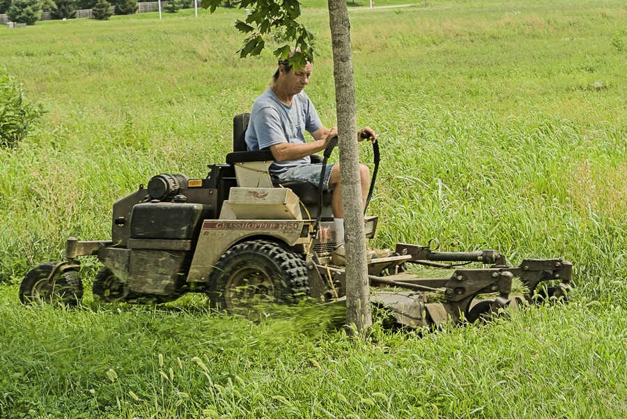 Mowing contractor damaging a tree