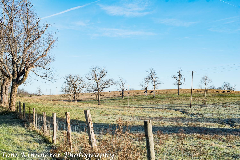 Venable Farm Wood Pastures-9776-Edit